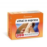 Jalea Real Vittal In Express 20 Viales