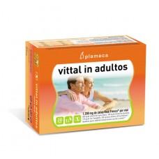 Jalea Real Vittal In Adultos 20 Viales