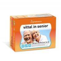 Jalea Real Vittal In Senior 20 Viales